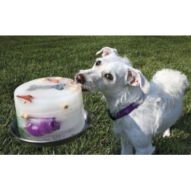 Kool Dogz Ice Treat Maker - Home & Garden