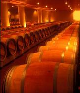 Tuscany Wine Experience Private Luxury