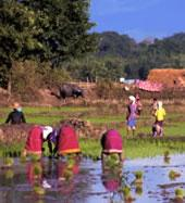 Keng Tung Adventure, Shan State, Myanmar 4 Days/ 3 Nights